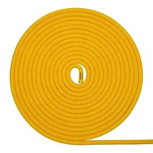Ion R Yellow Coil